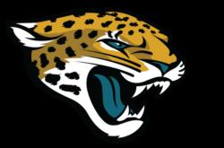 Jacksonville Jaguars Bars