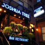 joshua tree nyc bar