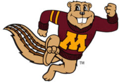 Minnesota Golden Gophers fan bars